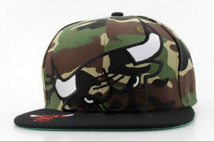 Chicago Bulls Hat QH 150426 249